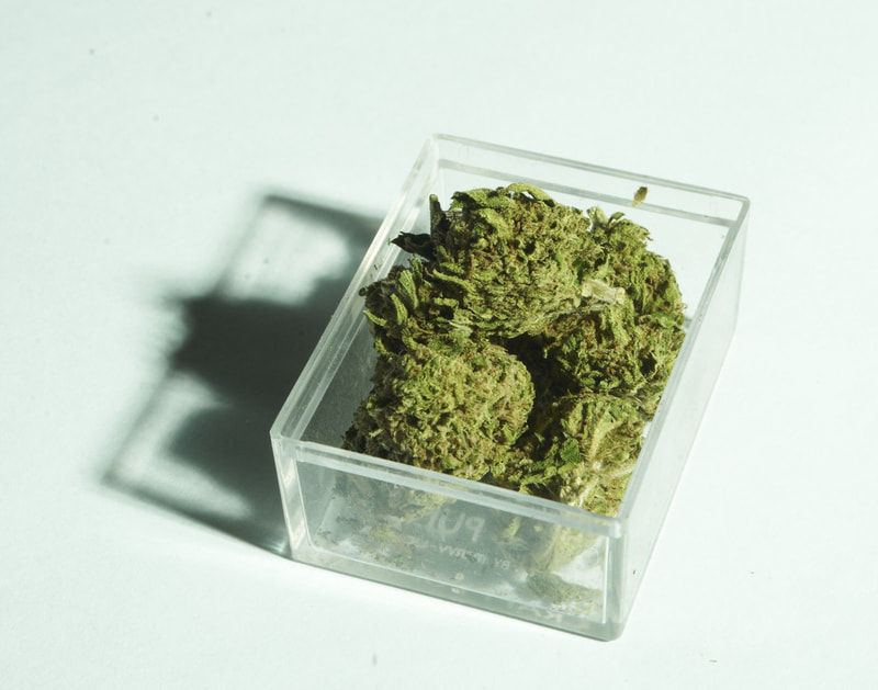 marijuana inside the tupperware